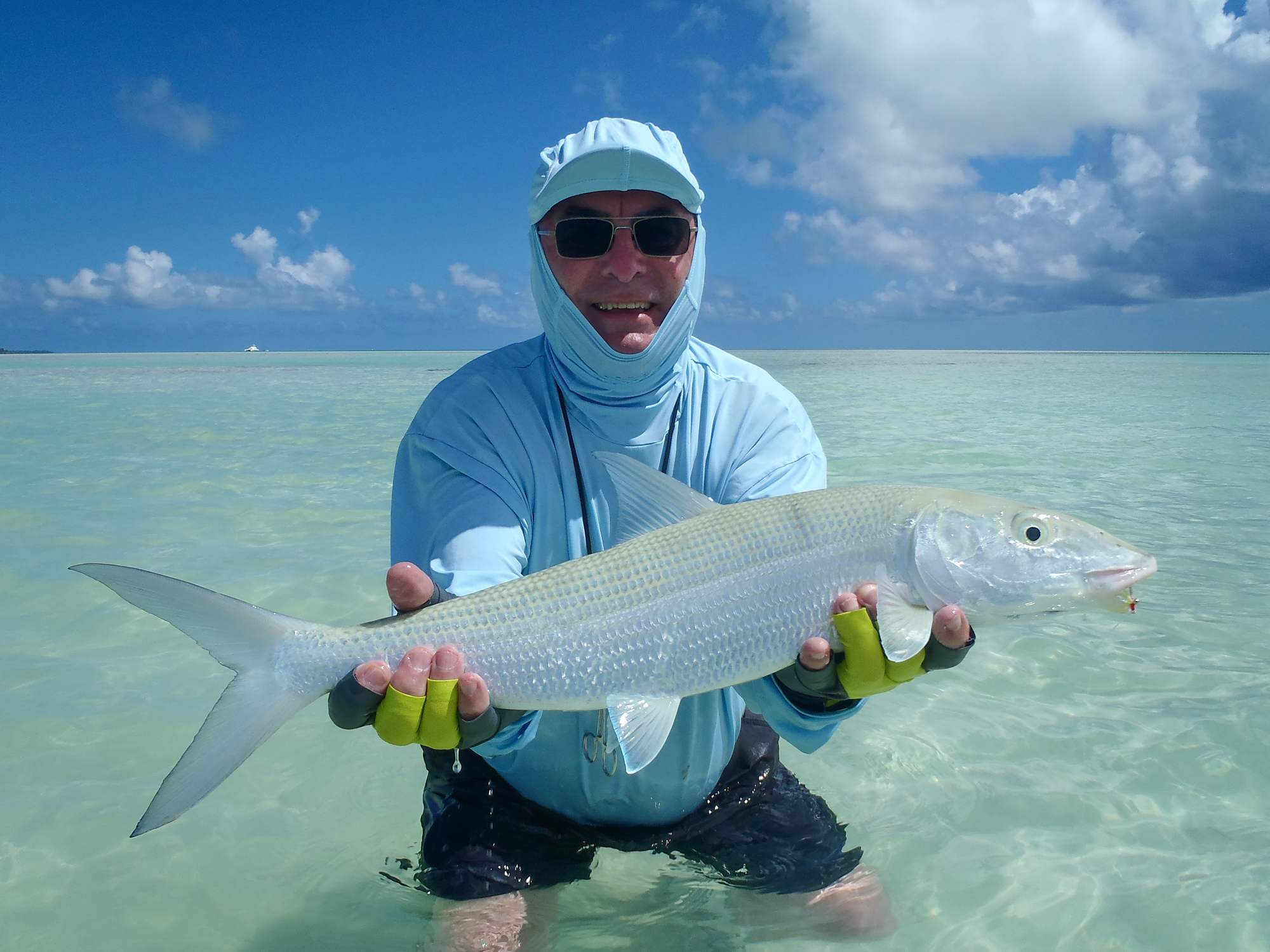 How to tell the difference between a shoal of bonefish and for Fish without bones
