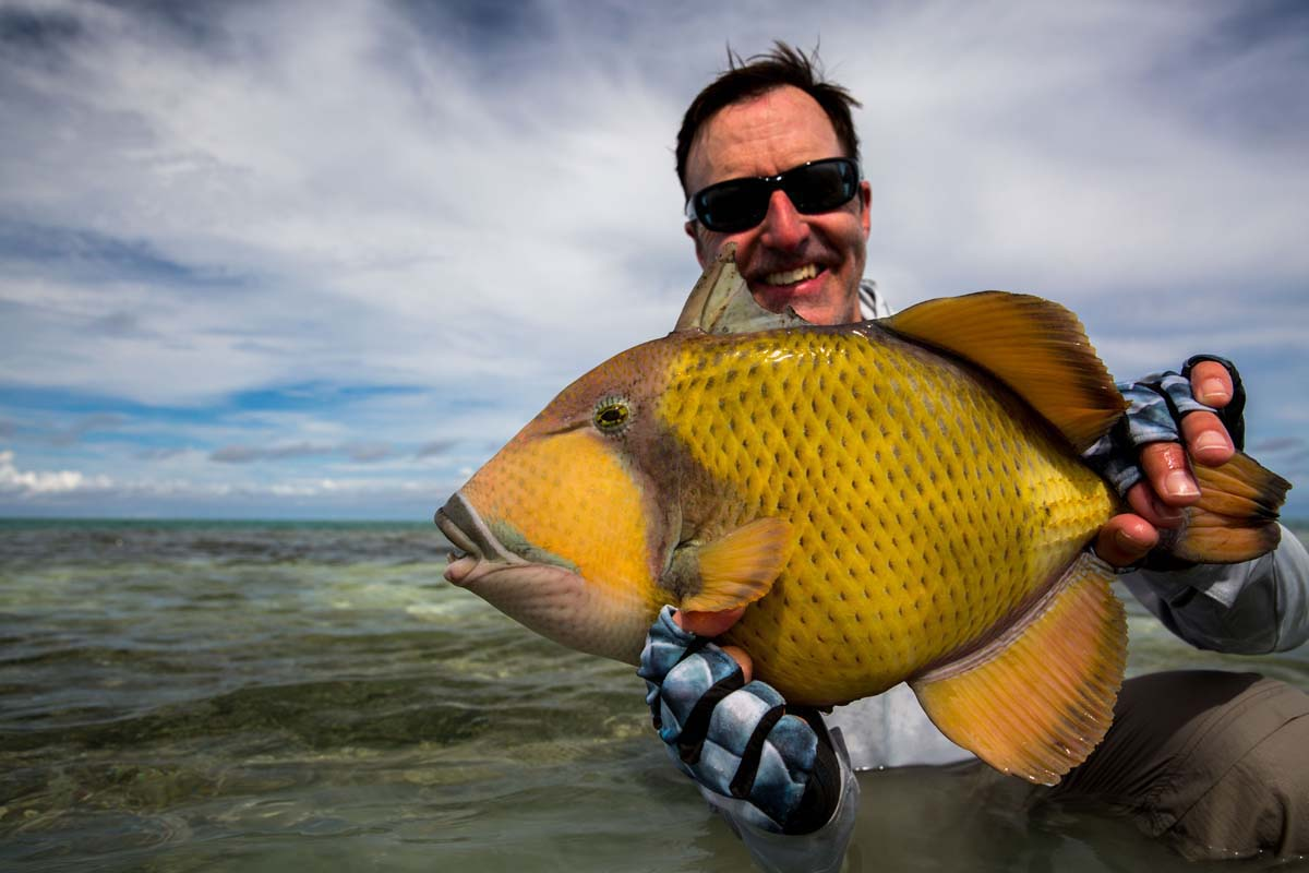 Moustache-Triggerfish-Alphonse-Fishing-Company