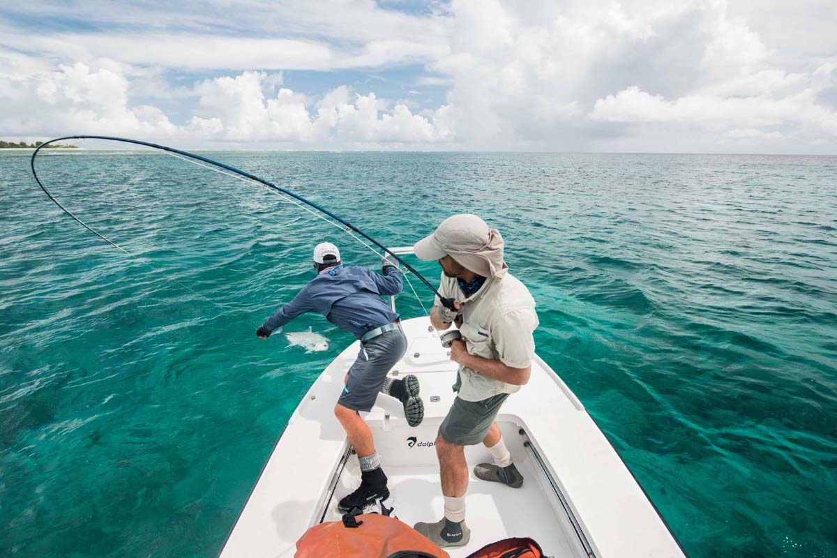 Giant-Trevally-Alphonse-Fishing-Company