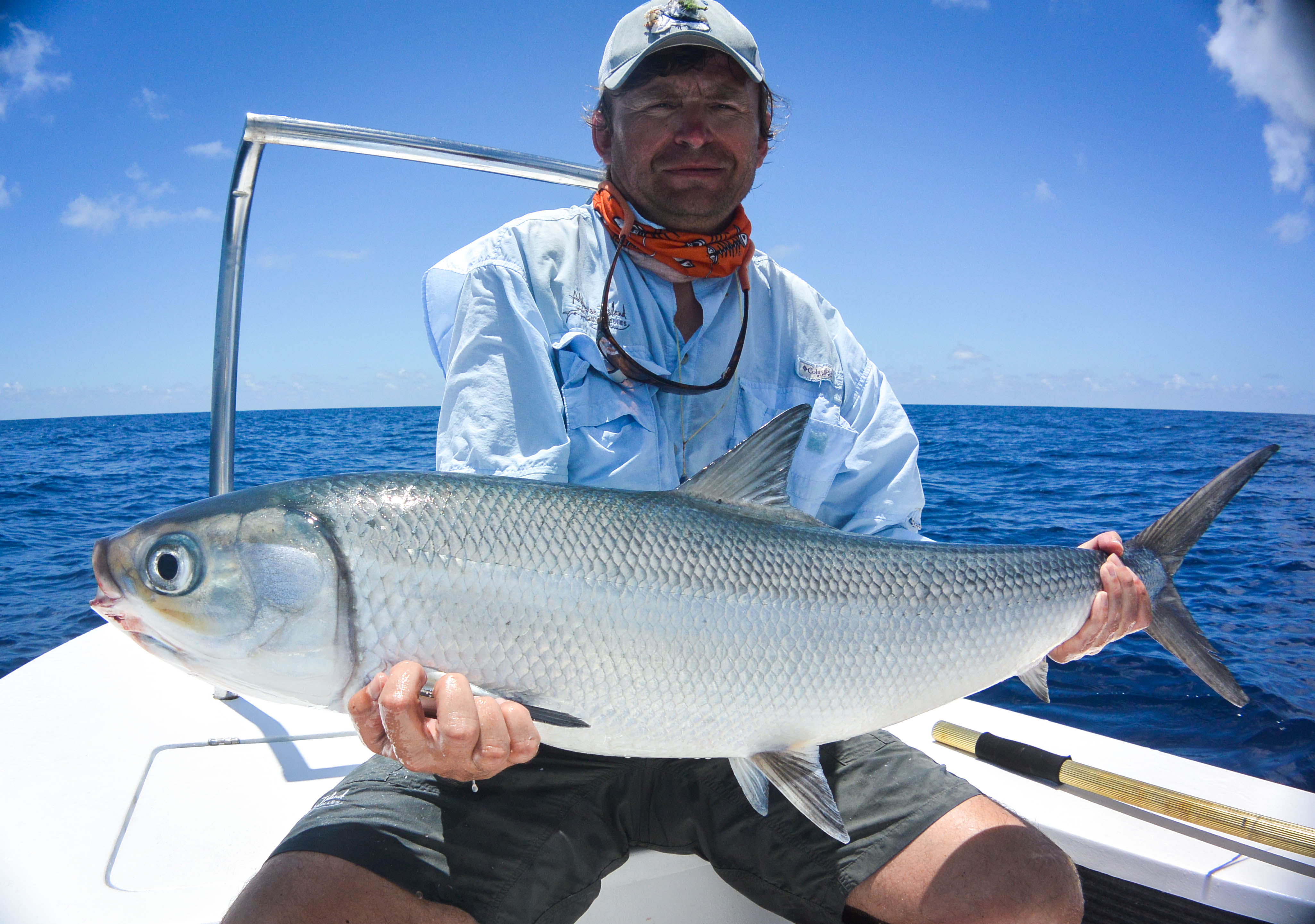 Alphonse Island Fishing 29 Oct – 4 Nov 2016 - Monster GT's