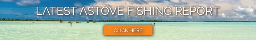 afc_cta_weekly_fishing-updates_destination_astove