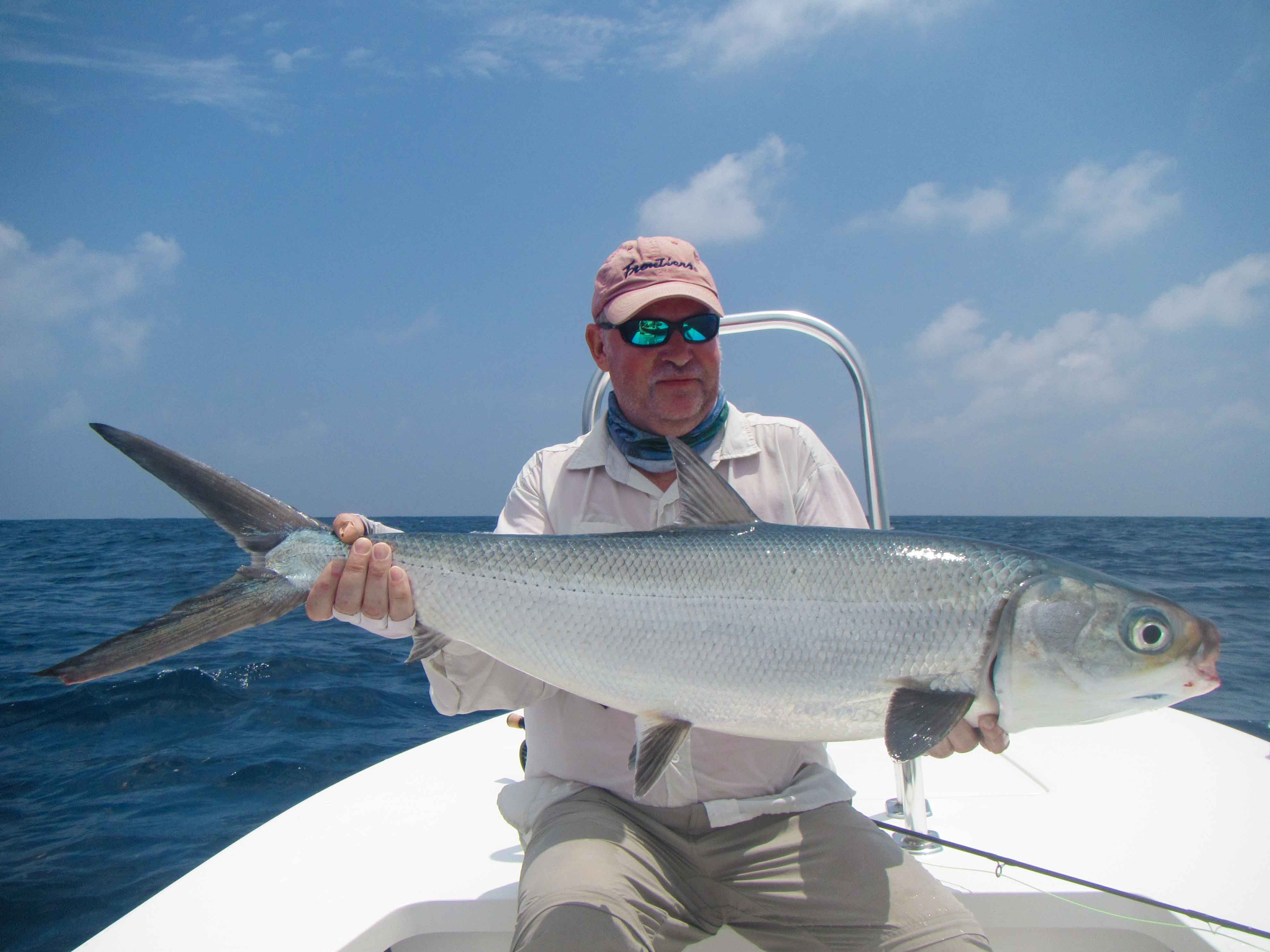Interesting Facts about Milkfish (Chanos Chanos)