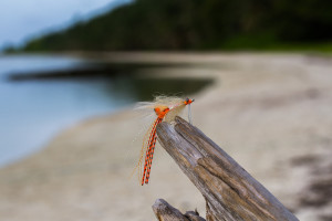 best-bonefish-flies-spawning-shrimp