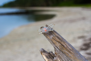 best-permit-flies-alphlexo-crab