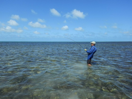 fly-fishing-indo-pacific-permit (2)