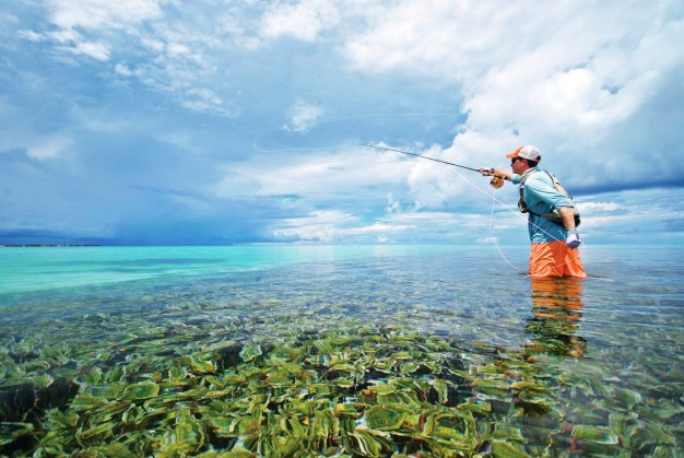 Fly-Fishing-Triggerfish-Best-Tides