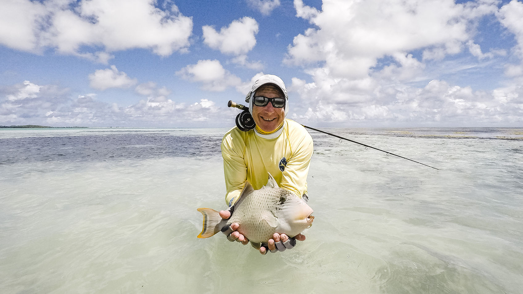 yellow-faced-triggerfish-seychelles